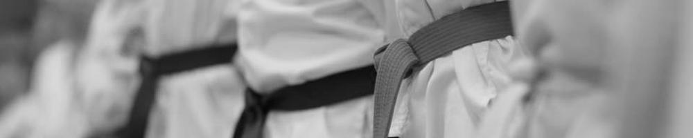 Taekwondo Nijverdal Banden