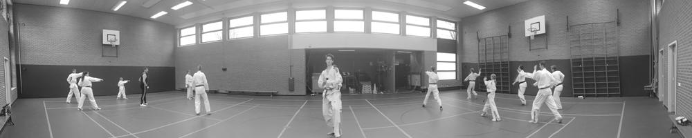 Taekwondo Nijverdal Stijl